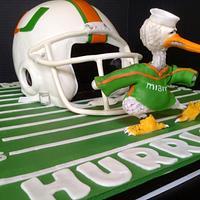 University of Miami Groom's cake