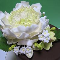 Open Peony Cake with Filler Flowers by Lydia Evans