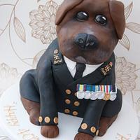 Navy Dog!!!