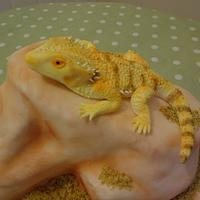 Sooty the Bearded Dragon by The Cake Lady