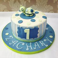 Boys Turtle themed cake