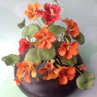 Tribute to People Living with Cancer Collaboration - Nasturtiums