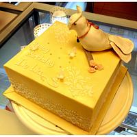 Knight Bird Cake :)