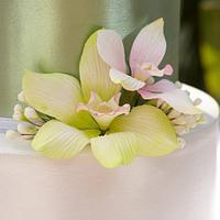 Sugar Orchids & Shimmer