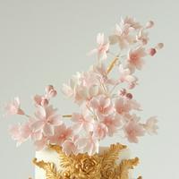 Cherry Blossom Cake by Cookie Hound!
