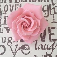 Gum-paste roses
