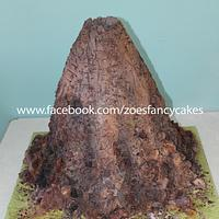 Volcano wedding cake!