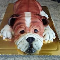 Bulldog cake