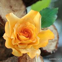 Delicate Garden Rose made of Flowerpaste