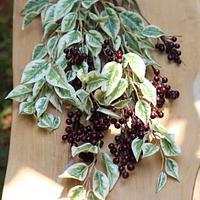Sugar Ficus leaves and Berries