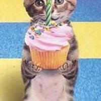 Copy Cat Cakes