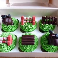 Horse and jumps cupcakes