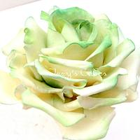 Cream and green sugar roses