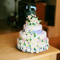 Daisy Shower Cake by Anna Rapoza