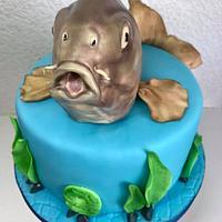 Cake carp