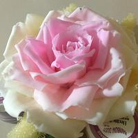 Large Pink and Yellow Icing Rose by Lisa Templeton