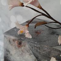 Torta cuadrada Cerezos