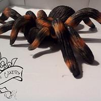 Modeling chocolate tarantula