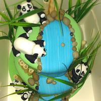 panda engagement by jodie baker