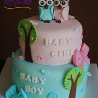 Twin Owls Baby Shower Cake