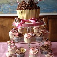 40th Giant Cupcake and Cupcakes