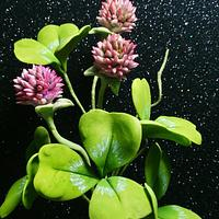 Free formed flowers- Clover