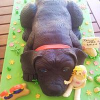 Black Dog Cake