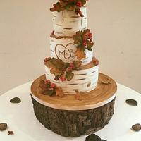 Autumn wedding cake!