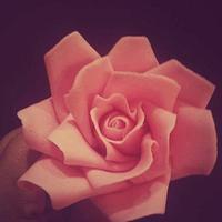 Sugar craft rose!!