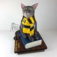 My Cat is a Hufflepuff