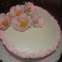 WASc with butter cream frosting by Cakes and Beyond by Naheed
