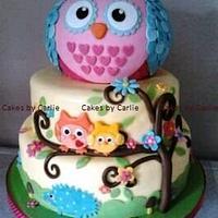 Karas Hooty Owl cake by Carlie