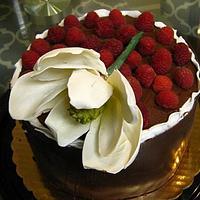 Chocolate wrapped birthday cake