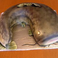 Catfish by Anka