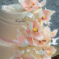 Peach, white and pink themed wedding cake