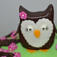 Owl 1st Birthday Cake + Smash Cake!
