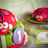Lady Bug with Smash Cake for First B-Day