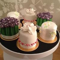 These are some sample mini cakes for a wedding consultation