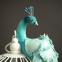 Teal Peacock