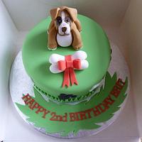 Doggie Birthday!