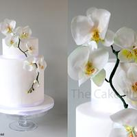 Moth Orchid Wedding Design