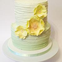 Pale green Ombre cake