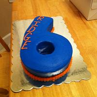 6th Birthday Cake...Florida Gator colors