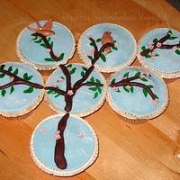cupcake spring by Gabriella Luongo