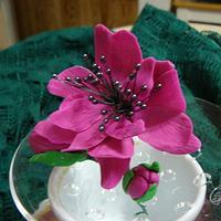 FANCY FLOWER
