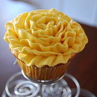 Carnation Cupcakes!