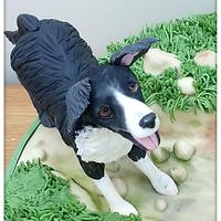 Dog Walking Cake
