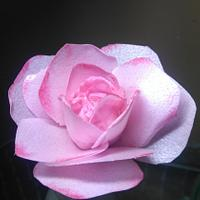 Wafer paper pink rose