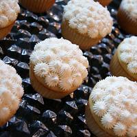 Vanilla cupcakes with vanilla bean icing