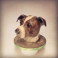 Dog face cake